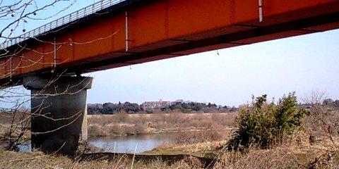 新大利根橋から戸頭神社方向を望む