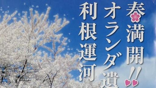 うんがいい花見.jpg