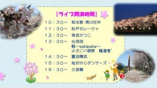 うんがいい花見06.jpg
