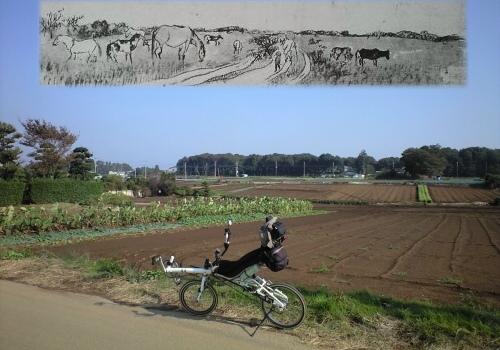 中野牧の風景(柏市逆井)と釜原の絵