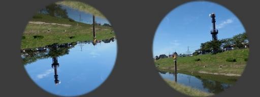 人間の視力(網膜と脳).jpg