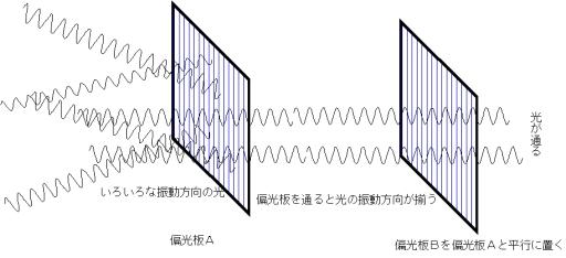 偏光板(偏光フィルム).jpg