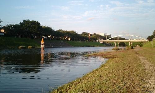 利根運河の水位(台風時)
