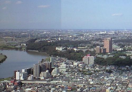 市川アイリンクタワーから国府台を望む