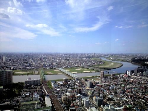 市川アイリンクタワーから江戸川上流の眺め