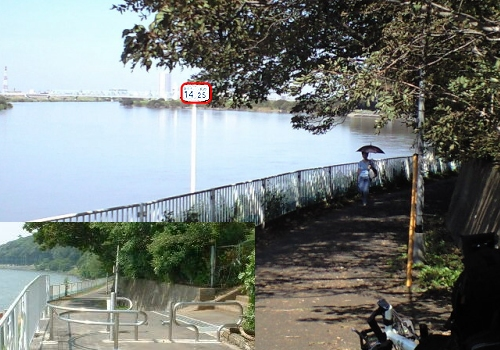江戸川CR左岸 海から14.25km
