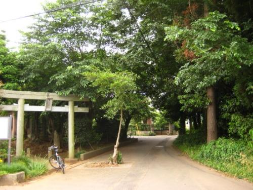 白井市富塚の鳥見神社01