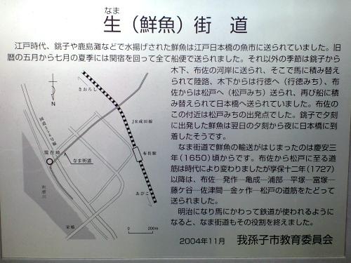 鮮魚街道(我孫子市布佐)