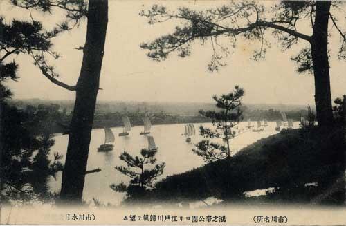鴻之台公園より江戸川帰帆望む