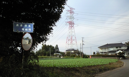 M.下総国(亭)庁へ.jpg