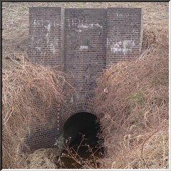 利根運河の樋管04