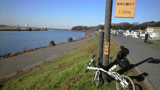 2013年元日の江戸サイ
