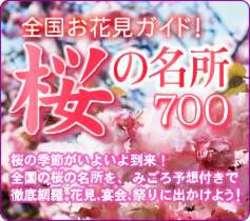 20060317hanami237.jpeg