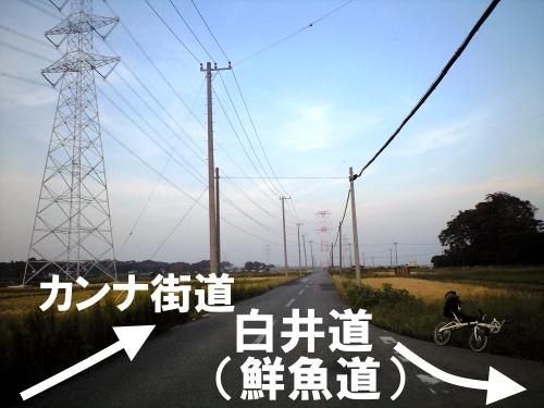 カンナ街道から平塚分校へ