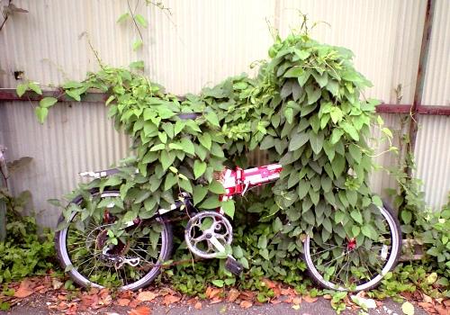 動かない自転車