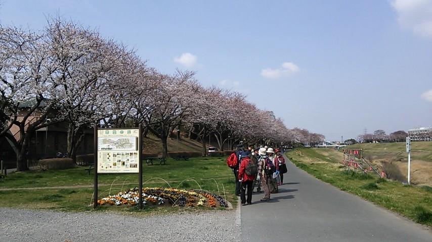 たく 選 日本 美しい なる 500 の みち 歩き