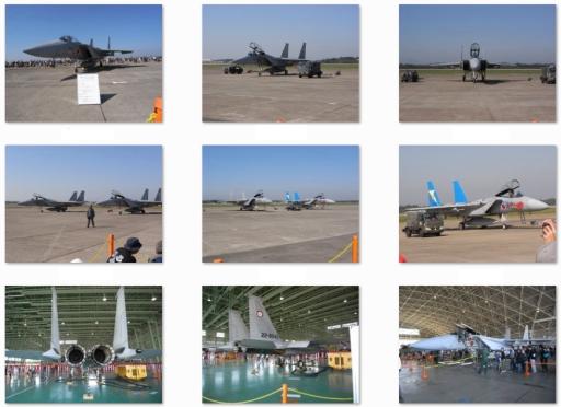 第305飛行隊(F-15J/DJ).jpg
