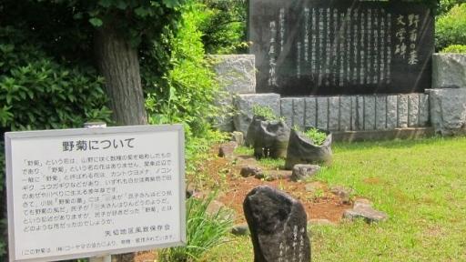 野菊の墓文学碑02.jpg