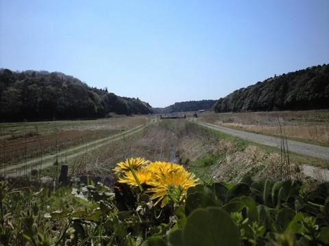 谷津田の風景(印西市)